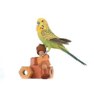 Country Artists Birds of the World Figurine - Budgie with Wooden Toy