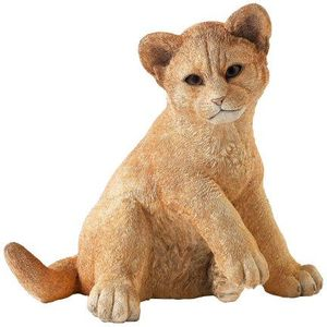Country Artists Natural World Figurine - Lion Cub Innocence (Large)