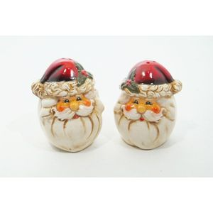 Santa Christmas Salt & Pepper Cruet Set