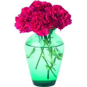 Personalised Candle with Carnations in Vase Design