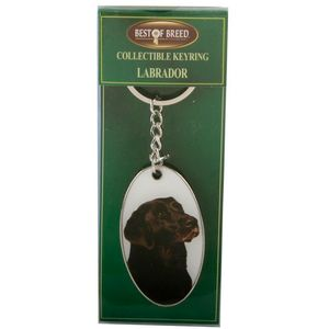 Best of Breed Black Labrador Keyring