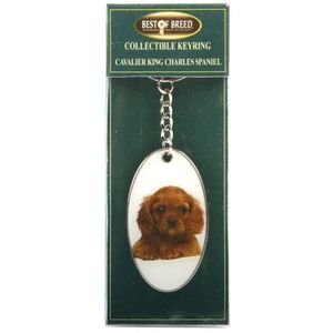 Best of Breed Keyring - Cavalier King Charles Spaniel