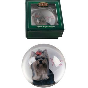 Best of Breed Yorkshire Terrier Paperweight