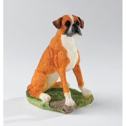 Border Fine Arts - Boxer Sitting (Fawn  & White) A24211