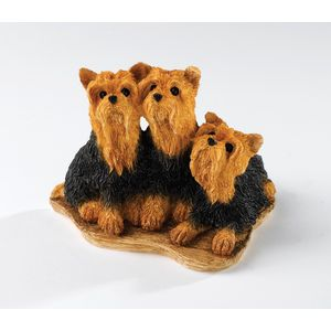 Border Fine Arts - Yorkshire Terriers Figurine