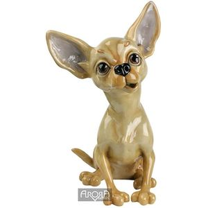 Pets with Personality Tiffany the Chihuahua