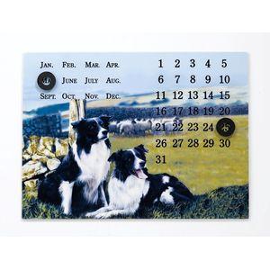 Border Fine Arts Studio Collection Viewpoint Magnetic Calendar - Border Collies