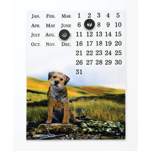 Border Fine Arts Studio Collection Viewpoint Magnetic Calendar - Border Terrier