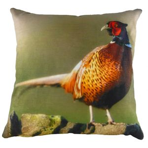 Evans Lichfield Villager Jim Collection Cushion Cover: Golden Pheasant 17x17""