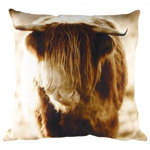 Villager Jim - The Fringe Cushion Cover