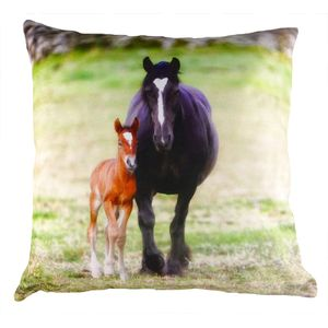 Villager Jim Collection Cushion Cover: Me & My Mum (Mare & Foal) 17x17""