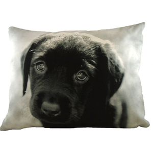 Villager Jim Puppy Eyes Cushion Cover