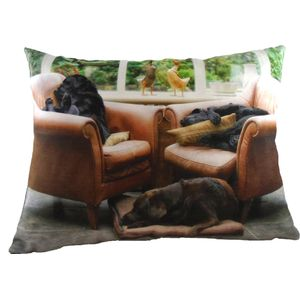 Villager Jim Let Sleeping Dogs Lie Cushion Cover