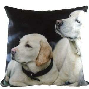 Evans Lichfield Villager Jim Collection Cushion: Father & Son (Yellow Labradors)