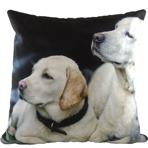 Evans Lichfield Villager Jim Cushion -Yellow Labradors Father & Son