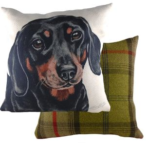 "Evans Lichfield Waggydogz Cushion Cover: Dachshund 17x17"""