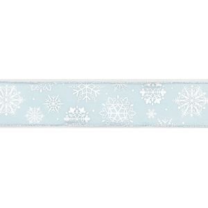 "Sheer Snowflake Blue/Silver Ribbon (10Yx2.5"")"