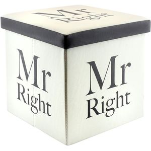 Fold Up Storage Box - Mr Right