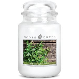 Goose Creek Large Jar Candle - Minted Eucalyptus