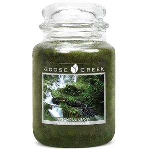 Goose Creek Large Jar Candle - Patchouli Leaves