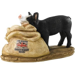 Kitchy & Co Mr Hoggs Piggy Wiggy Nuts