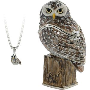 Hidden Treasures Secrets Little Owl Trinket Box