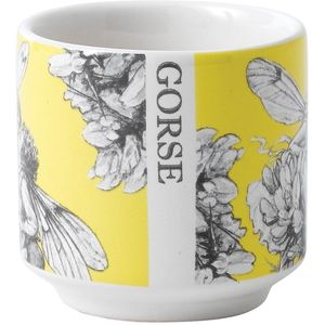 Flower Fairies Egg Cups (Set of 2) - Gorse