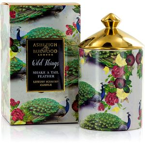 Ashleigh & Burwood Wild Things Scented Candle - Shake a Tail Feather