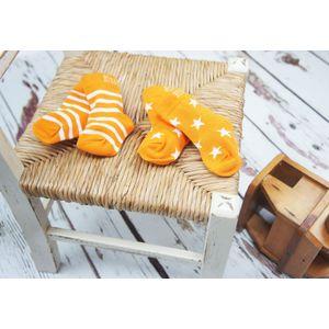 Blade & Rose Orange Stripe/Star Socks