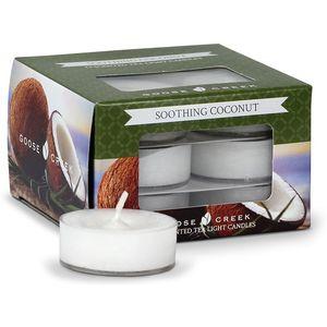 Goose Creek Tea Lights 12 Pack - Soothing Coconut