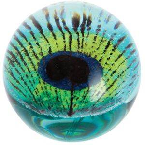 Caithness Crystal Peacock Giftware Paperweight