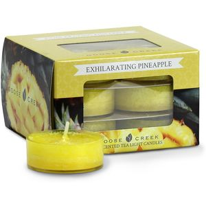 Goose Creek Tea Lights 12 Pack - Exhilarating Pineapple
