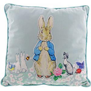 Beatrix Potter Peter Rabbit Pin-Up Cushion 40cm x 40cm