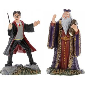 Harry Potter Harry And The Headmaster Figurines