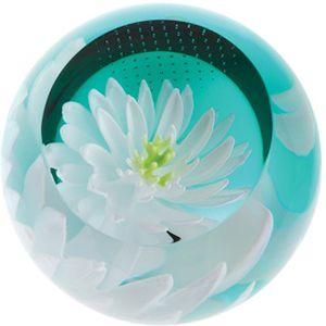 Caithness Glass Paperweight: Floral Charms - Waterlily