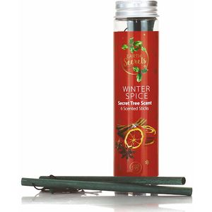 Ashleigh & Burwood Earth Secrets Scent Sticks 6 Pack - Winter Spice