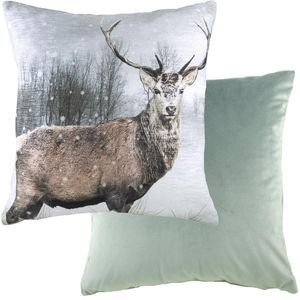 """Evans Lichfield Photo Collection Cushion Cover: Stag 17x17"""""""