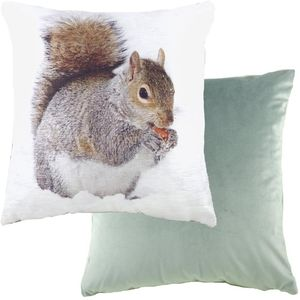 """Evans Lichfield Photo Collection Cushion Cover: Squirrel 17x17"""""""