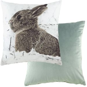 """Evans Lichfield Photo Collection Cushion Cover: Hare 17x17"""""""