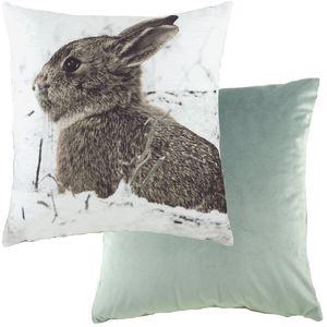 "Evans Lichfield Photo Collection Cushion: Hare 17x17"""