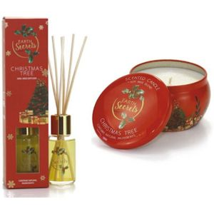 Ashleigh & Burwood Earth Secrets Reed Diffuser & Candle Set - Christmas Tree