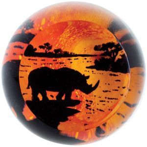 Caithness Glass Paperweight: On Safari - Rhino