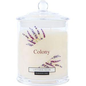 Wax Lyrical Colony Medium Jar Candle - Lavender Fields