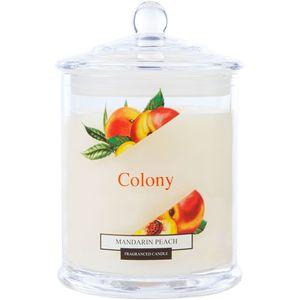 Wax Lyrical Colony Medium Jar Candle - Mandarin Peach
