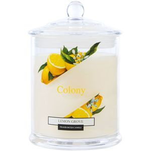 Wax Lyrical Colony Medium Jar Candle - Lemon Grove