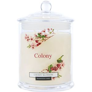 Wax Lyrical Colony Medium Jar Candle - Cherry Blossom