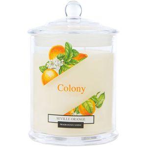 Wax Lyrical Colony Medium Jar Candle - Seville Orange
