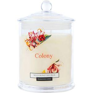 Wax Lyrical Colony Medium Jar Candle - Wild Honeysuckle