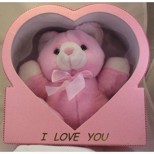 Someone Special Pink Teddy Bear in Heart Box