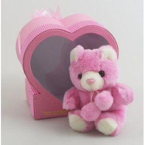 Someone Special Bear in Heart Gift Box